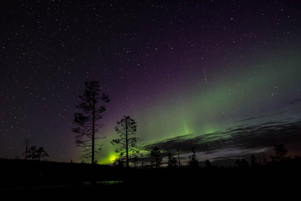 Polarlicht in violett und grün